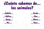¿Cuánto sabemos de los animales?